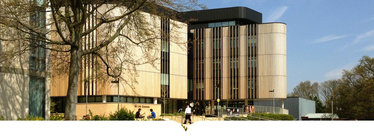 جامعة ساوثهامبتون